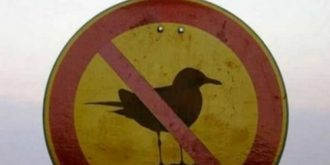 Funny Animal Signs For Warning People