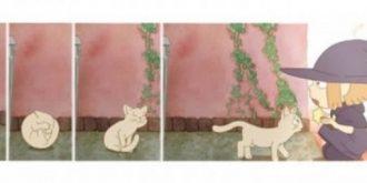 5 Amazing Short Animation Films