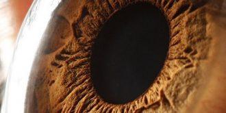 Extreme Close-up of Human Eye by Suren Manvelyan