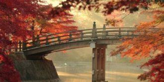 Beautiful Photographs of Autumn
