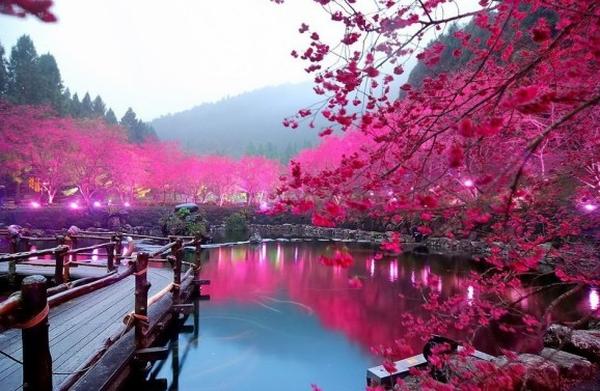 Amazing Outdoor & Nature Photos #2