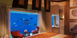 10 Beautiful In-Wall Aquariums