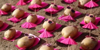 Potato Protest Installations by Peter Pink