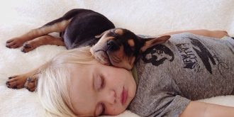 Lovely Photos of a Toddler Sleeping with His Puppy