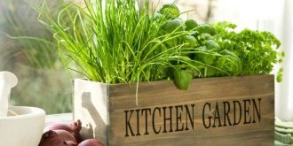 Create Your Own Indoor Herb Garden